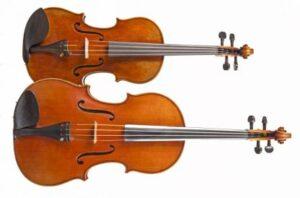 Violin Viola x